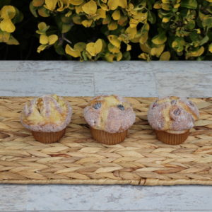 FRUIT AND NUT MUFFINS 908