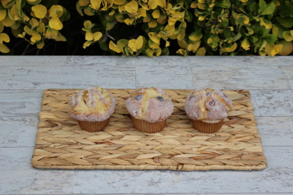 FAKE FRUIT AND NUT MUFFINS 908