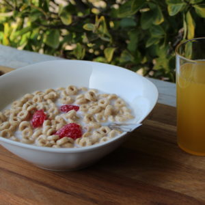 Fake Cheerios with Strawberries