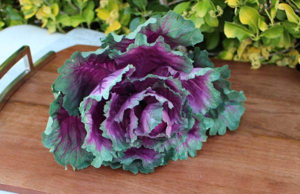 Fake Purple Cabbage Head