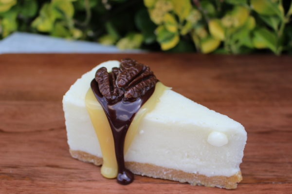 TURTLE CHEESECAKE 252T 1