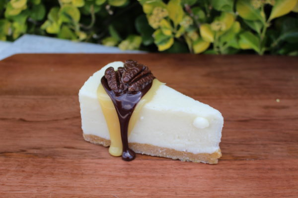 TURTLE CHEESECAKE 252T